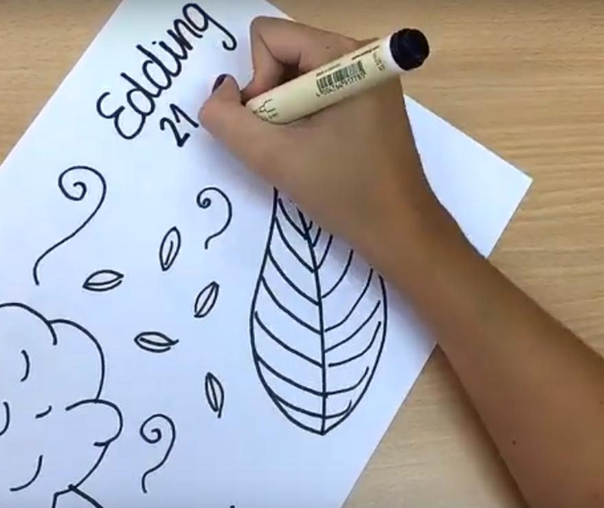 material escolar ecológico de papelería
